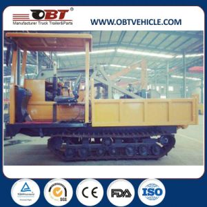 Rubber Track Site Dumper with Hydraulic Dozer Blade pictures & photos