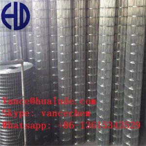 Hot DIP Galvanized or PVC Coated Welded Wire Mesh pictures & photos