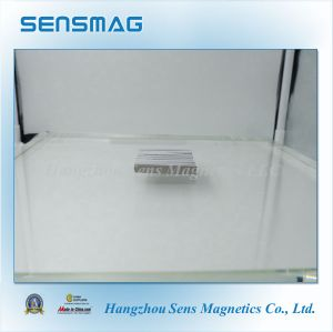 Customized Shaped Permanent Rare Earth Magnet with RoHS Approved pictures & photos