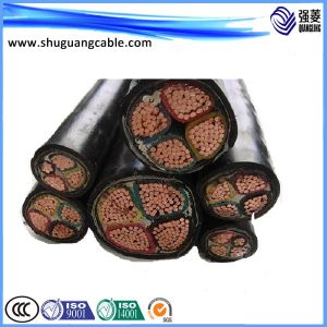 PE Insulation Sheathed Armored Instrument Computer Cable pictures & photos