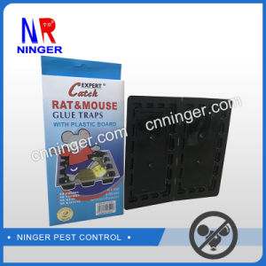 Adhesive Strong Rat and Mouse Glue Trap pictures & photos