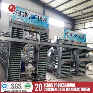 Algeria Sell Well Laying Hens Poultry Battery Chicken Cages pictures & photos