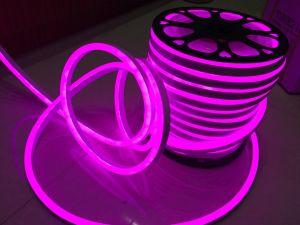 SMD 2835 LED Neon Flex Sign (Pink, 220V, 12V) pictures & photos