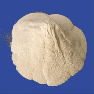 Lactose, Monohydrate with Best Price CAS 10039-26-6 pictures & photos