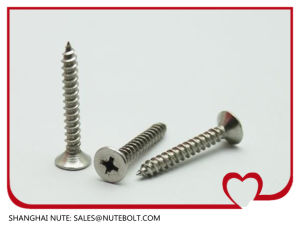 stainless steel flat head self tapping screw pictures & photos