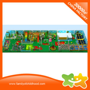 Giant Multifunctional Indoor Play Centre Equipment for Sale pictures & photos