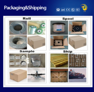 300V 250c UL5180 Nickel PTFE Tape Insulated Fiberglass Electrical Cable pictures & photos