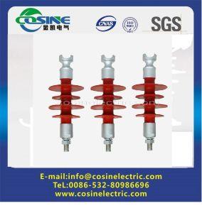 Pin Insulator/Composite Insulator/Composite Pin Insulator/Polymer Pin Insulator pictures & photos