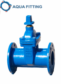 Ductile Iron Gate Valve DIN3352 F4/F5 Soft Resilient Seated pictures & photos