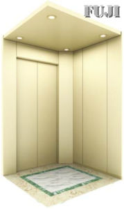 Villa Elevator / Lift Wiht White Colour pictures & photos