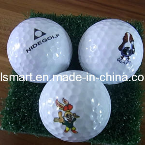 Exercise Practice Driving Range Golf Ball (PHB-99018) pictures & photos