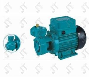 Peripheral Pump (JLQ) with CE Approved pictures & photos