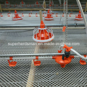 Full Set Automatic Poultry Farming Equipments pictures & photos