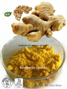 Ginger Extract Gingerols 20% by HPLC / Ginger Oleoresin pictures & photos