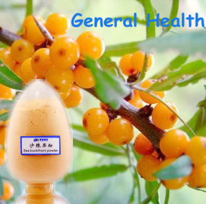 Organic Sea Buckthorn Powder (fruit and vegetable power)
