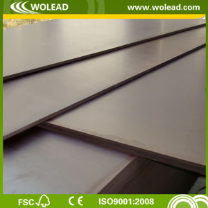 Concrete Plywood with Poplar Core Brown Film Plywood (W15080)