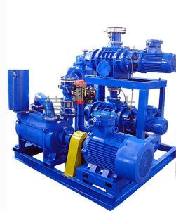 Jzj2b2500-4.2.1 Roots Water-Ring Vacuum Pump