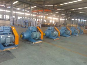 Water Treatment Roots Blower Nsrh pictures & photos