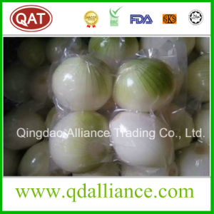 Fresh White Peeled Onion with vacuum Pack pictures & photos