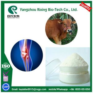 Chondroitin Sulfate Bovine Powder 90% Assay pictures & photos