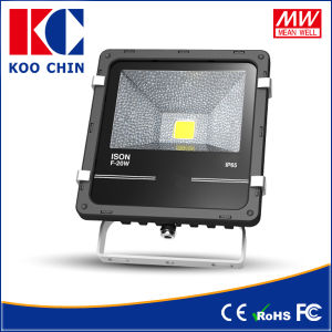 Outdoor Using 20W IP65 LED Projector Lamp