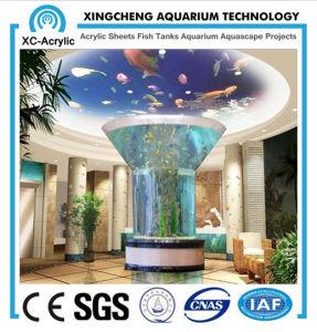 High-Grade Large Aquarium Fish Tank pictures & photos