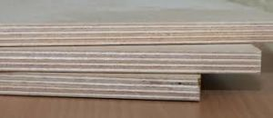 Premium 18mm Birch Plywood for USA Market pictures & photos