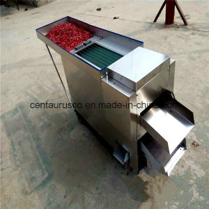 Stainless Steel Chilli Seed Removed Machine with Best Price