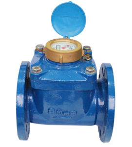 Removable Water Meter