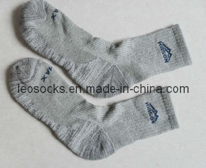 Men Sport Outdoor Coolmax Socks pictures & photos
