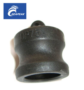 PP Camlock Coupling Type DP pictures & photos