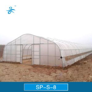 Sp-S-8 Tunnel Plastic Film Greenhouse