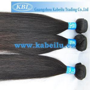 Natural Brazilian Human Hair (KBL-BH-ST) pictures & photos