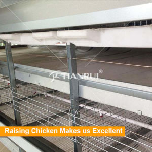 Broiler poultry farm house design/broiler poultry equipment for broiler pictures & photos