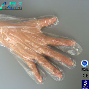 Poly Disposable Gloves, Clear White Poly Gloves for Restaurant pictures & photos
