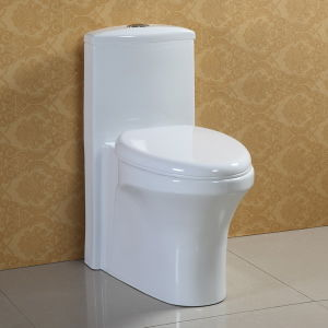 Water Save Ceramic Toilet at-572