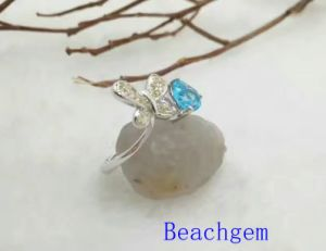 Jewelry-Topaz Sterling Silver Ring (R0276) pictures & photos