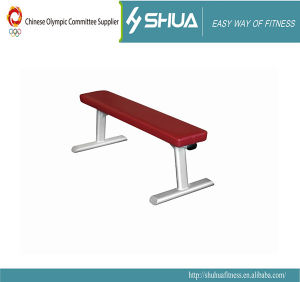 Body Building Equipment Fitness Equipment Flat Bench