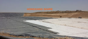 LDPE Geomembrane Liner for Pond Water and Shed pictures & photos