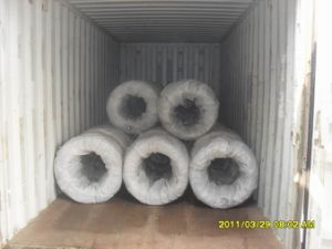 Soft Black Annealed Binding Wire pictures & photos