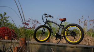 500W 48V Hmmer Fat Tire Lowrider Mountain Electric Bicycle pictures & photos