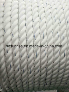 Ppd Rope/PP Rope/PE Rope/Polypropylene Rope/Polyethylene Rope pictures & photos