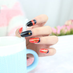 Hot Sale 12PCS Nail Art Sticker Wholease with Private Label pictures & photos