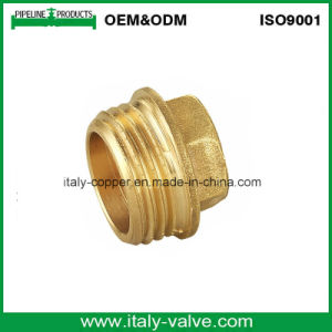 European Quality Wholesale Forged Brass Plug Fitting (AV-BF-7006) pictures & photos