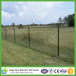 China Supply Security Chain Link Fence pictures & photos