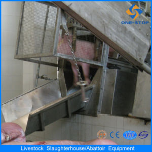 Ce Pig Abattoir Equipment in Slauhgter House pictures & photos