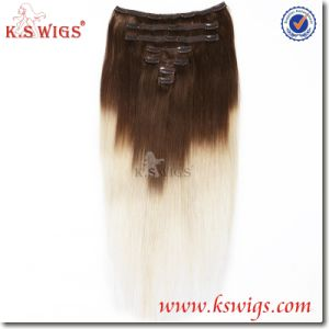 Clip Hair Remy Brazilian Virgin Human Hair Extensions pictures & photos