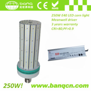 250W E39/E40 LED Corn Light CE RoHS with Meanwell Driver 3 Years Warranty