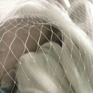 HDPE Monofilament Knotted Anti Bird Netting pictures & photos