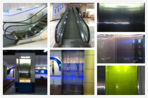 Moving Sidewalk Fjr5000-1 pictures & photos